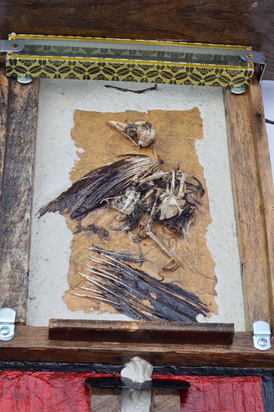 Bird Totem3